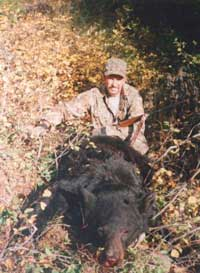 Montana Black Bear Hunting at it's best!
